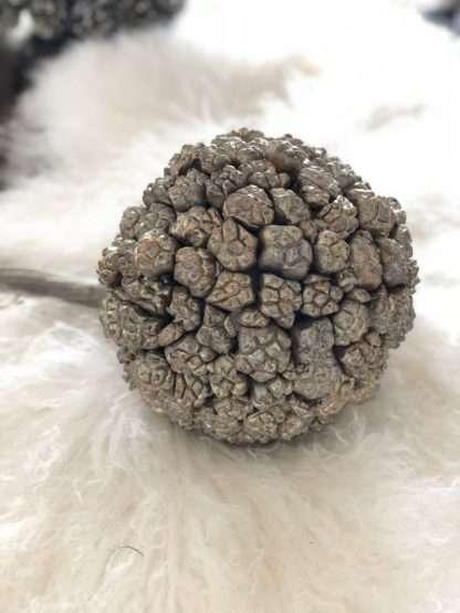 Kiya Frucht Ball, silber gold Dekorationsball mit Naturfrüchten Dekoball