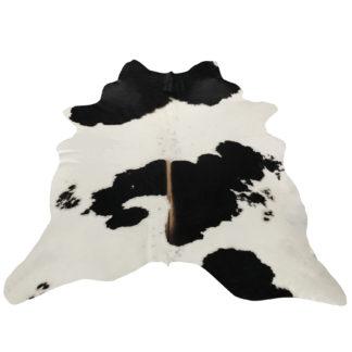 Stierfell Kuhfell Exclusives Stierfell Kuhfell Rinderfell weiß schwarz braun ausgefallene Kuhfell Rinderfell Unikat Rinderfellteppich