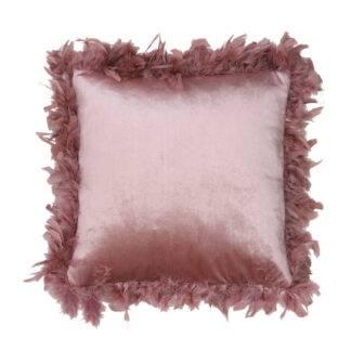 Kissen Samt rosa mit echten Federn Federbordüre Samtkissen rosa light and living 45 cm quadratisch