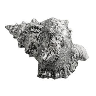 Deko Muscheln Nautilus silber antik zum Hinstellen oder Aufhängen Shell Sommerdekoration Maritim Mediterran Syltstil St.Tropez Sommer Strand Muscheln Meer