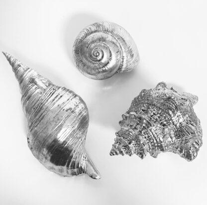 Deko Muscheln Nautilus silber antik zum Hinstellen oder Aufhängen Shell Sommerdekoration Maritim Mediterran Sommer Strand Muscheln Meer