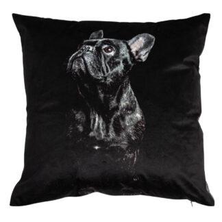 Kissen Motiv Mop Hund schwarz weiß Samt edel Hundekissen Kissen Hund Mop Mops Hunde