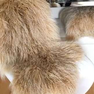 Tibet Lammfell, mongolisches Schaffell echt Fell super weich beige mit weißen Spitzen